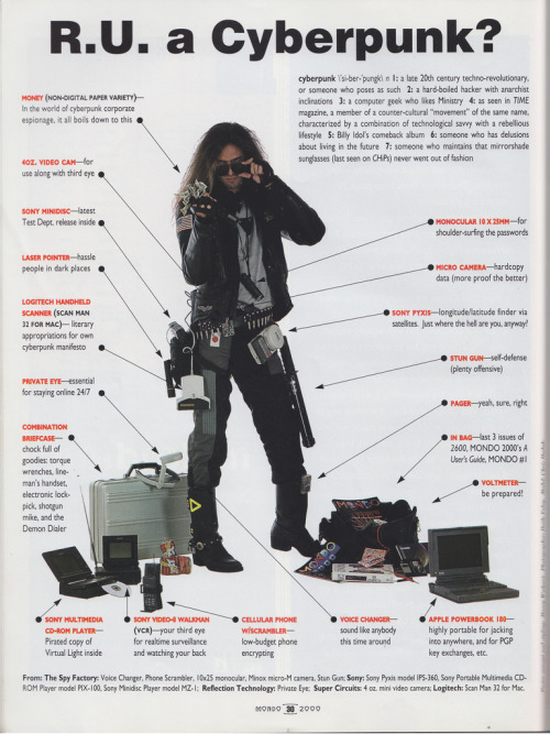 RU A CYBERPUNK? Taken from a copy of Mondo 2000 magazine in the mid-90s. Via