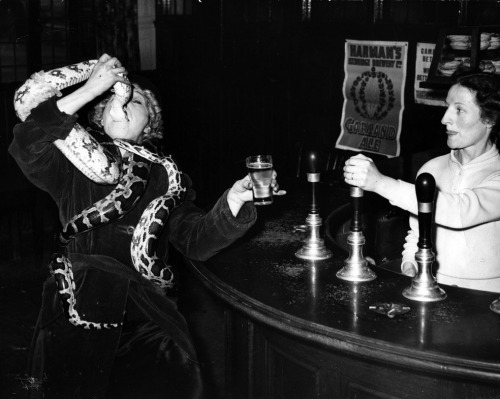 Circus performer Millie Kayes swallowing the head of a 12ft python in the bar of the Peggy Bradford hotel, 1952