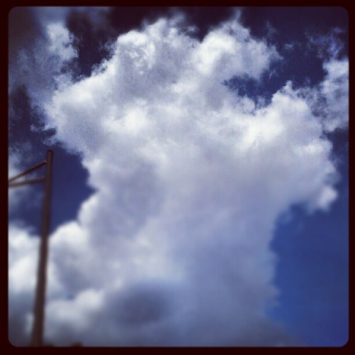 I rise from the ashes #clouds #TME  (Taken with instagram)