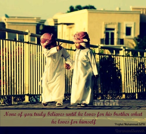 islamic-quotes:  Love your brother Source : QuranandSunnah