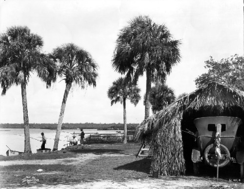 oldflorida:  I'd rather be camping in Oldsmar, 1919.