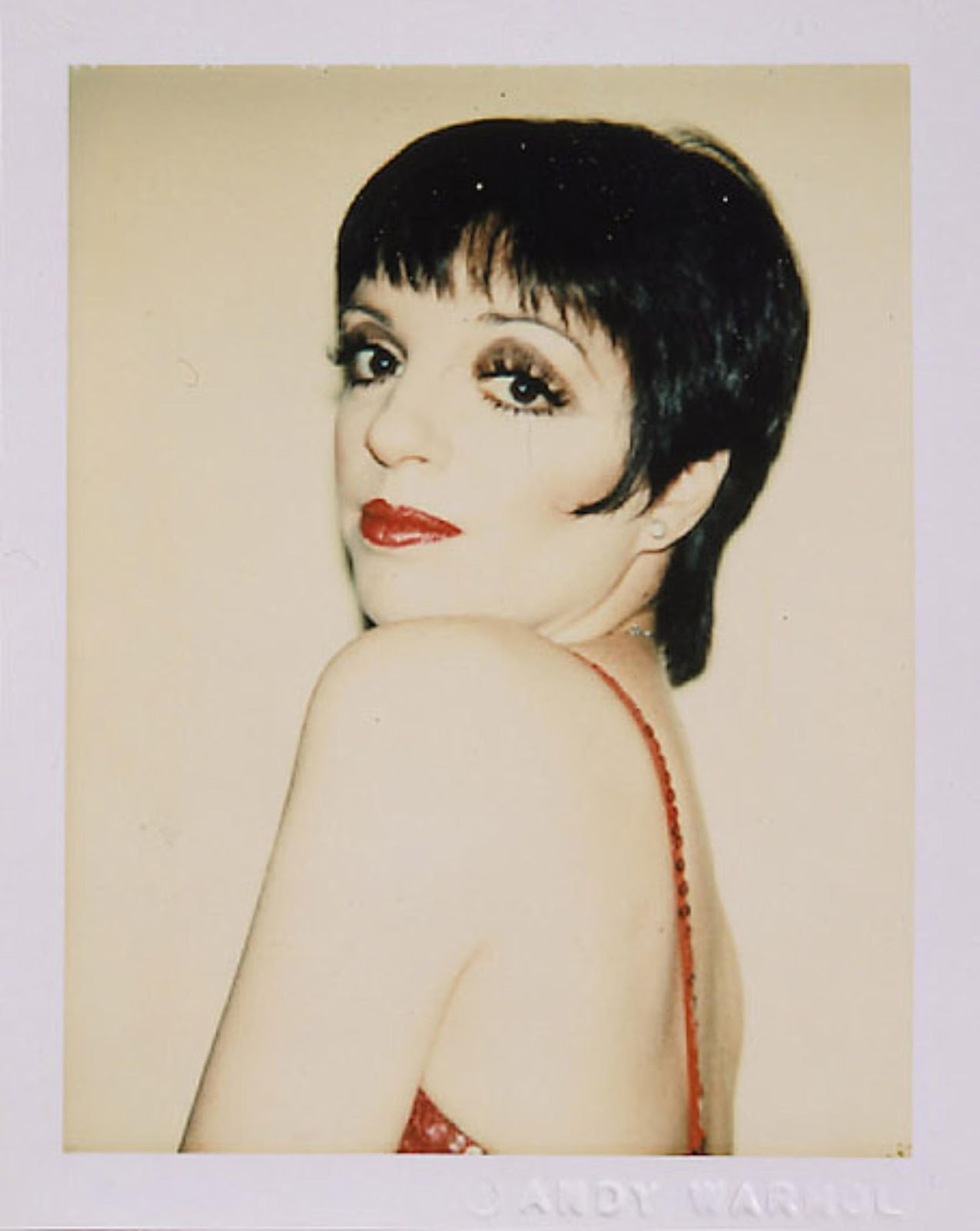 Polaroid by Andy Warhol  Liza Minnelli