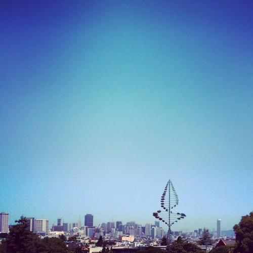 #sf  (Taken with Instagram at Mission Dolores Park)
