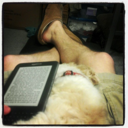 Fell asleep on my lap while I was reading  (Taken with instagram)