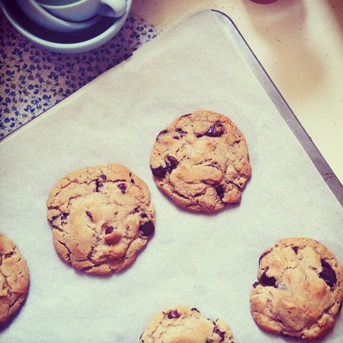 look what just came out of the oven… #sharefood #cookies #dessert #bakingaddict #bake #chocolatechip - the only cookie i crave. (Taken with instagram)