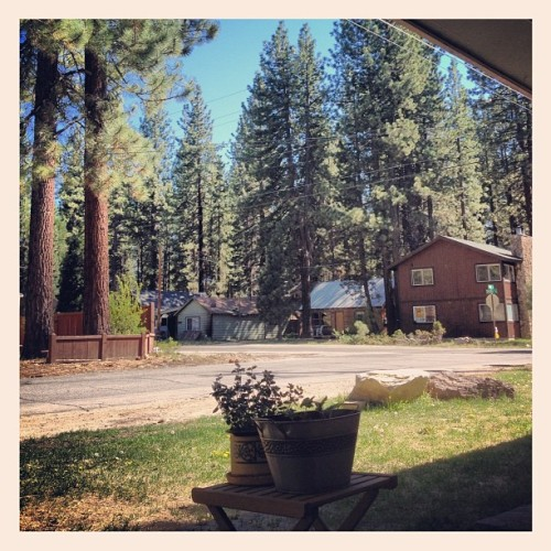 Relaxing at home. #myview #southlaketahoe #lifeisgood #california #trees #ilovemylife #fromwhereisit #myyard  (Taken with instagram)