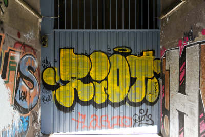 riots & flagio by dug_da_bug on Flickr.Riot