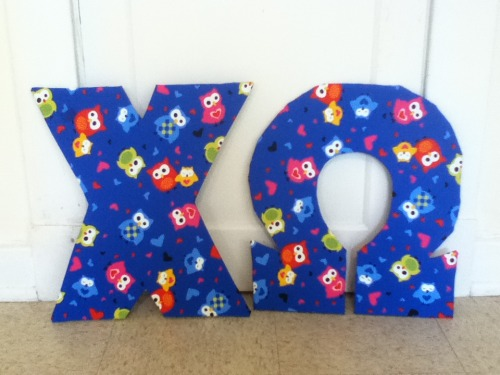 mlkobs:  The awesome owl window letters that I made for my Little for C-H-I-O Days last Fall!!