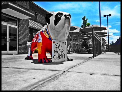 "Two of my favorite things: Chick Fil A ""eat mor chikin"" and UGA bulldogs. GO DAWGS!! Woof Woof!"