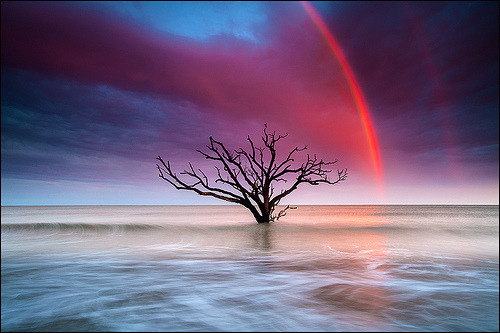 lori-rocks:  Colors of Botany Bay at Sunset (by IgorLaptev)