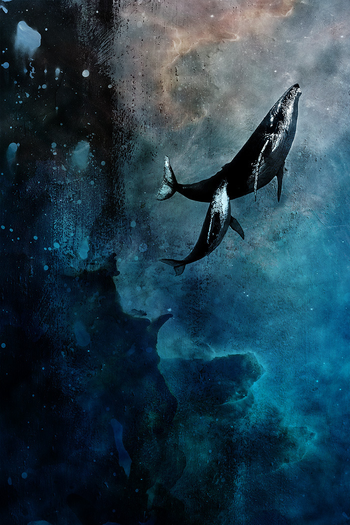 fer1972:  Flying Whales by Alex Cherry