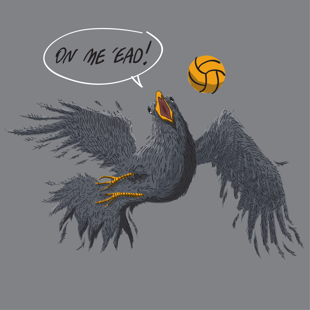 danleydon:  Football Crow! He scores when he wants!