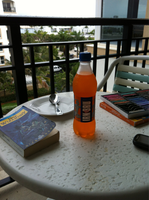 dduane:  hurricaneaudrey:  Any place I can get Irn-Bru is a good place, even when it's raining. Irn-Bru+Deep Wizardry+roommates reading and drawing on the balcony while watching storms roll across the island=bliss  Florida is a good place for this. Florida is where I got the idea for the book: Florida is where (when swimming in the middle of the night out behind the Fountainbleu Hotel) the dolphin snuck up on me and shoved me in the back and scared me half to death. And then gave me That Smile and swam off. …Mind the sharks.  :)