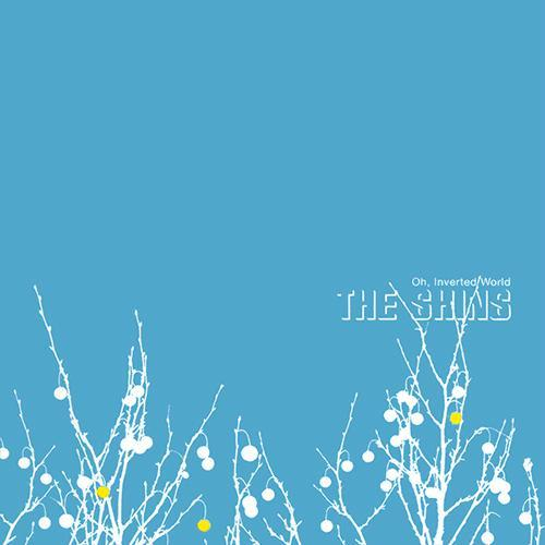 anotherdustygroove:  Oh, Inverted World by The Shins. Great record. Literally, no weak points.