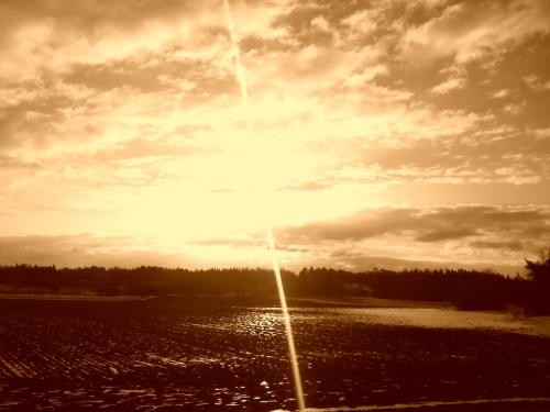 Morning in sepia 03/12/2012