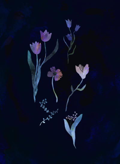 astridandersson:  some flowers