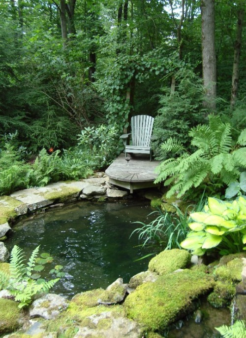 a tranquil hidden retreat