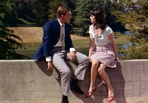 Ted Bessell & Marlo Thomas in That Girl.