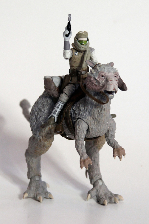 VC Hoth Luke and Tauntaun, via MattAndKristy (Flickr).