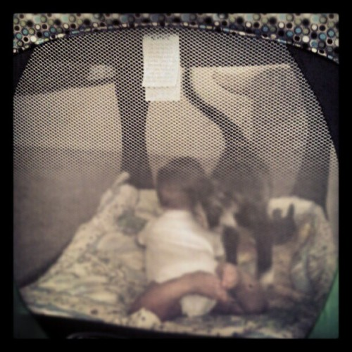 LC May wanted to comfort Drew :) (Taken with instagram)