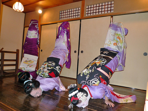 "etsukokogai:  ""Kin no Shachihoko"" by arumukos on Flickr. Skillfull Geiko-san!Via Flickr: Geiko Mamesuzu-san, Geiko Mayuha-san and Maiko Mameteru-san (Tama Trio)"