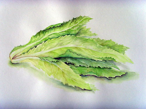 watercolour vegetable (by looyusum)