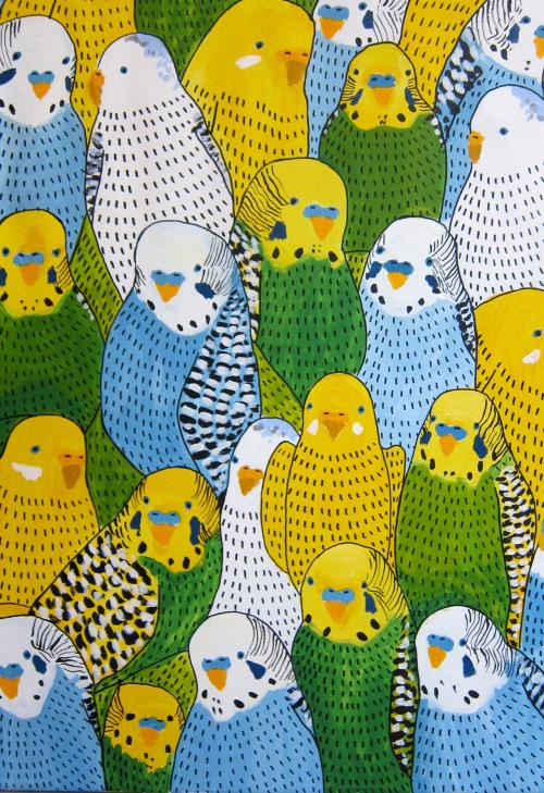 beckington:  Yeees… Budgie art!!