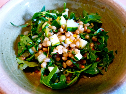 Wheat Berry Salad with Orange Vinaigrette This wheat berry salad is a really light and nutrient packed summer salad that would be great to bring to a picnic. It would travel well and is also even better the next day. You can substitute water or vegetable broth when cooking the wheat berries. Serves 6  Ingredients for the salad: 1 cup hard wheat berries 6 cups low sodium chicken broth 1 cup seeded and diced cucumber 1 zucchini, diced 1 shallot, minced 4 cups arugula 1 cup mint, coarsely chopped 1/2 bunch Italian flat leaf parsley, coarsely chopped Ingredients for the dressing: Juice and zest of 1 orange 3 tablespoons white wine vinegar 3 tablespoons extra virgin olive oil 1 tsp anchovy paste 1 tsp red pepper flakes freshly cracked black pepper, to taste salt, to taste Method:  Boil wheat berries and chicken broth for 1 hour or until the wheat berries are cooked but still slightly chewy. You may need to add a little more water or chicken broth as the wheat berries cook. Meanwhile chop your cucumber, zucchini, shallot, mint and parsley and place in a large mixing bowl with the arugula. In a separate bowl, whisk together all of the ingredients for the salad dressing and set aside. When the wheat berries have cooked, drain them and add them to the vegetables and pour over the dressing while they are still hot. Toss to combine, season to taste and serve.