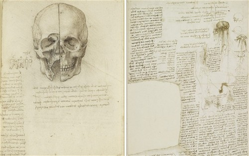 proustitute:  A skull sectioned 1489, in Leonardo da Vinci's sketch book and right a page from his notebook, including his to-do list, c. 1510