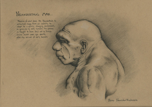 Neanderthal Man Sketchbook page from the other day… I was pretty happy with this piece, not so much the quality of the drawing as much as the speed I completed it. I've been trying to work faster and I think my speeds getting a little better, this was about a 2 and a half hour session… Here I'm studying the basic surface anatomy of the Neanderthal man, lately I've been pretty obsessed with evolution and this whole idea of primitive man, and the different species of man throughout time. It's a subject I have always had a lot of interest in… but anyway, I hope you all like it!