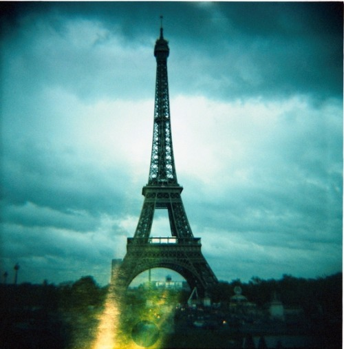 lomographicsociety:  Lomography Camera of the Day - Lomography Diana F+