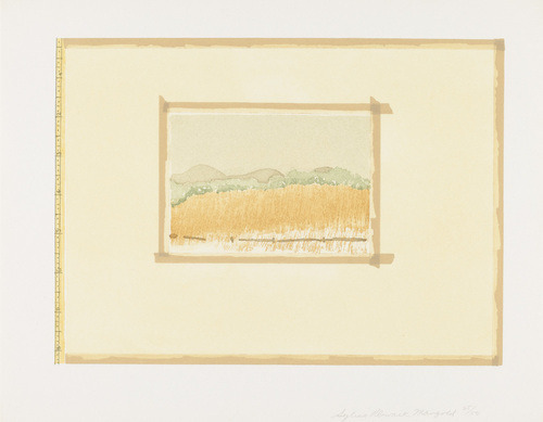 "cinoh:  Untitled from Aquatint, Sugarlift and Golden Changes Sylvia Plimack Mangold (American, born 1938) 1977. One from a portfolio of three etching and aquatints, composition: 8 3/8 x 11 3/8"" (21.3 x 28.9 cm); sheet: 10 13/16 x 13 7/8"" (27.4 x 35.2 cm). Publisher: Parasol Press, Ltd., New York. Printer: Crown Point Press, San Francisco. Edition: 50. John B. Turner Fund."