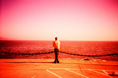 Lomography Tag of the Day - view