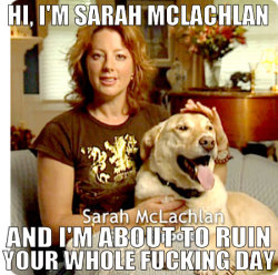 No shit. (via Hi, I'm Sarah McLachlan | The Meta Picture)