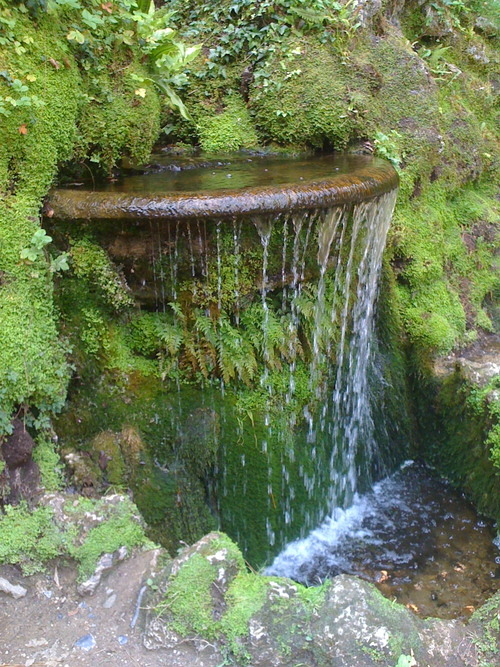 cageofstars:  Powerscourt Gardens, Ireland