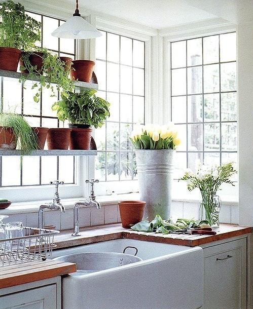 myidealhome:  light and plants (via Next Home)