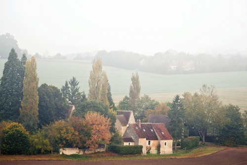 cognacandcoffee:  ailia:  Misty morning by Clairspics on Flickr.  This looks so beautiful