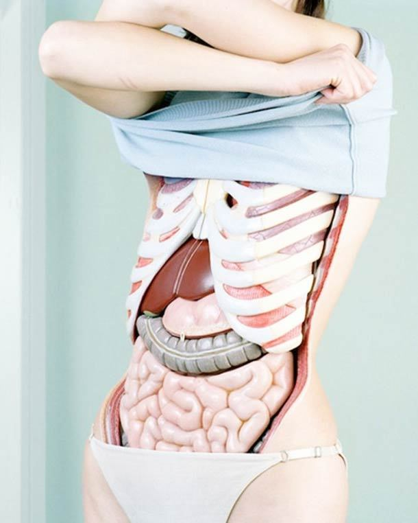 (via Juxtapoz Magazine - Anatomy Revealed by Koen Hauser | Current) via http://boingboing.net/2012/05/24/digitally-manipulated-photos-o.html