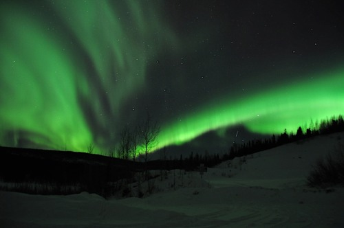 The University of Alaska Fairbanks Geophysical Institute estimates the auroras are visible 243 nights a year from the Fairbanks area. Many photographers escape Fairbank's ambient lights by traveling the Elliott or Steese Highways to capture the auroras. A popular destination is the Wickersham Dome Trailhead parking lot at mile 28 and nearby pullouts on the Elliott Highway. Those trails lead into the Bureau of Land Management-managed one-million-acre White Mountains National Recreation Area and its winter trails. Here's a photo taken near the Wickersham Dome Trailhead.Photo: Karen Laubenstein, BLM-Alaska