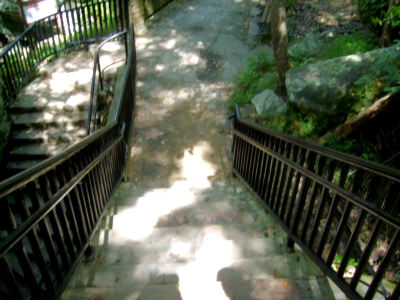 I took this photograph during the summer of 2010. The stairs lead to an area that overlooked Cumberland Falls in southeastern Kentucky.