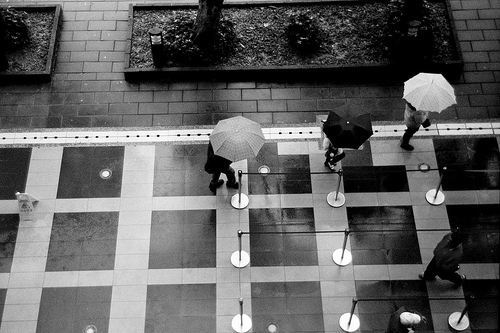 naraes:  Negative0-04-0A(1) (Sigma.DP2.Kiss.X3)