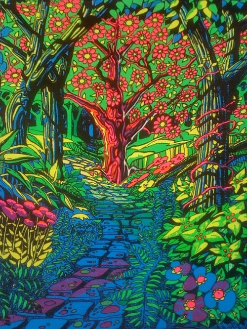 butterflieswhispertodeath:  Vintage Psychedelic black light poster