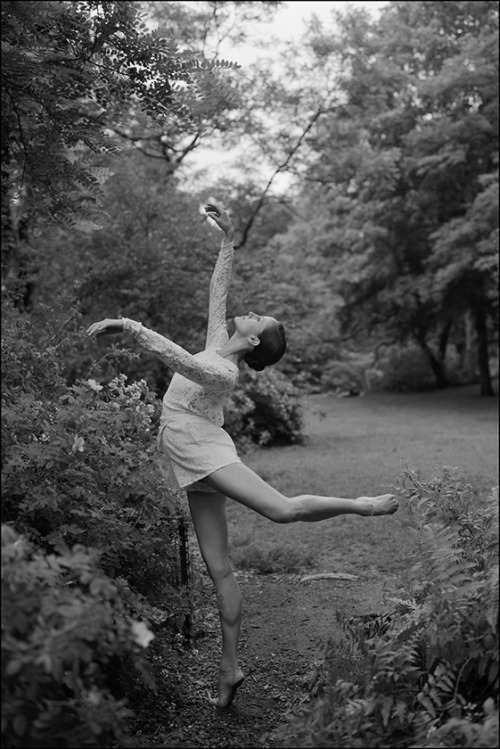 ballerinaproject:     Alessandra - Strawberry Fields           Become a fan of the Ballerina Project on Facebook. Check out the new Ballerina Project blog.