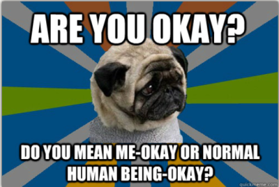 clinicallydepressedpug:  Credit: anon