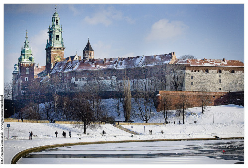 likeyouimaginedwhenyouwereyoung:  Wawel Castle, Poland (by www.fotohuta.pl)I've been here, but not in winter. It looks gorgeous!