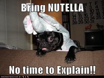 aslongaswerehere:  ALL THE NUTELLA!