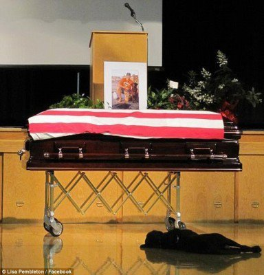 Navy SEAL Jon Tumilson lay in a coffin, draped in an American flag, in front of a tearful audience mourning his death in Afghanistan. Soon an old friend appeared, and like a fellow soldier on a battlefield, his loyal dog refused to leave him behind.  Tumilson's Labrador retriever, Hawkeye, was photographed lying by Tumilson's casket in a heart-wrenching image taken at the funeral service in Tumilson's hometown of Rockford, Iowa, earlier this week. Hawkeye walked up to the casket at the beginning of the service and then dropped down with a heaving sigh as about 1,500 mourners witnessed a dog accompanying his master until the end, reported CBS.