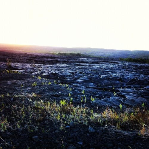 Taken with Instagram at Lava Fields