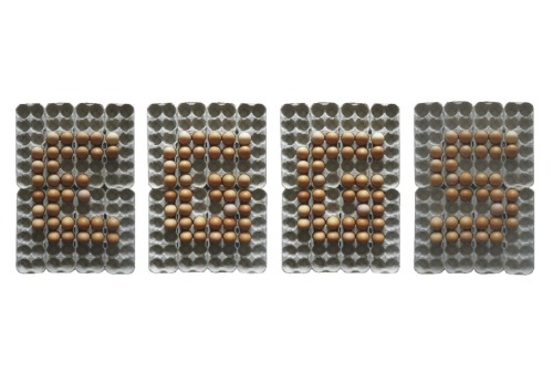 forestfountain:  im currently making a typeface out of eggs  I really like this! However, a bit of constructive criticism: I think you should make sure the images are all focused [the same] and make sure the white balance and all that jazz is the same.