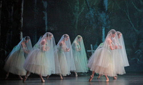 sonyanatalia:  Artists of Houston Ballet in Giselle Photo: Amitava Sarkar